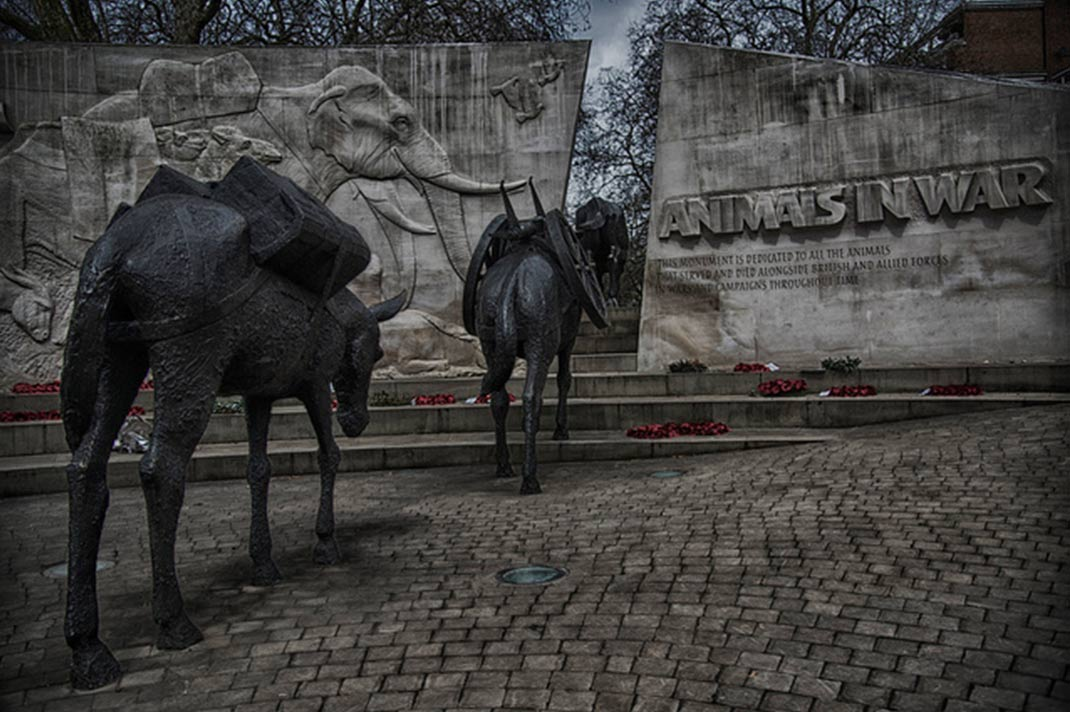 Animals In War memorial, Hyde Park, London, England.