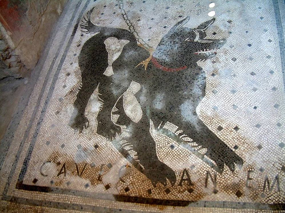 Cave canem mosaics ('Beware of the dog') were a popular motif for the thresholds of Roman villas.