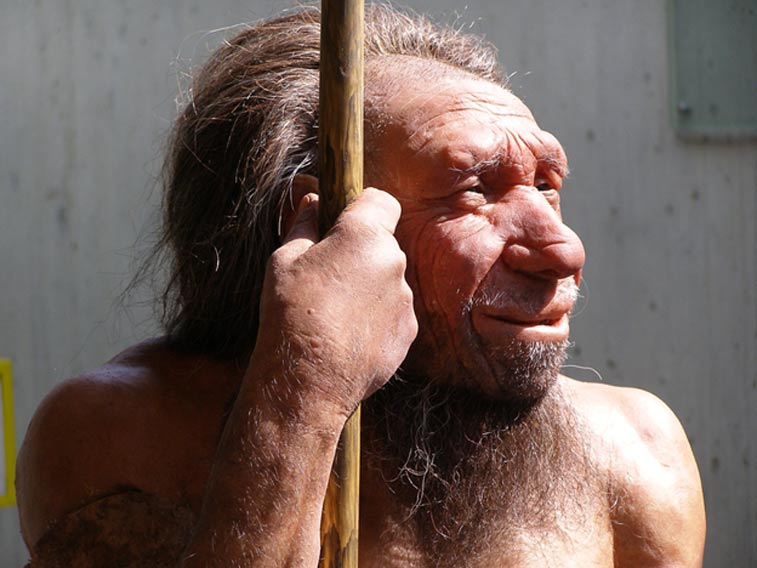 Reproduction of what Neanderthals may have looked like, Neanderthal Museum, Krapina, Croatia.