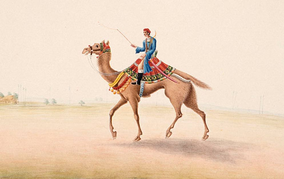 A camel rider in Bihar, British India in 1825.