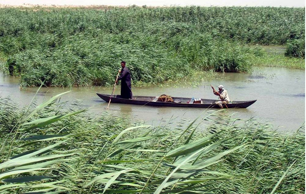 Marsh Arabs poling a mashoof (traditional boat) in the marshes of southern Iraq in the Tigris–Euphrates river system.