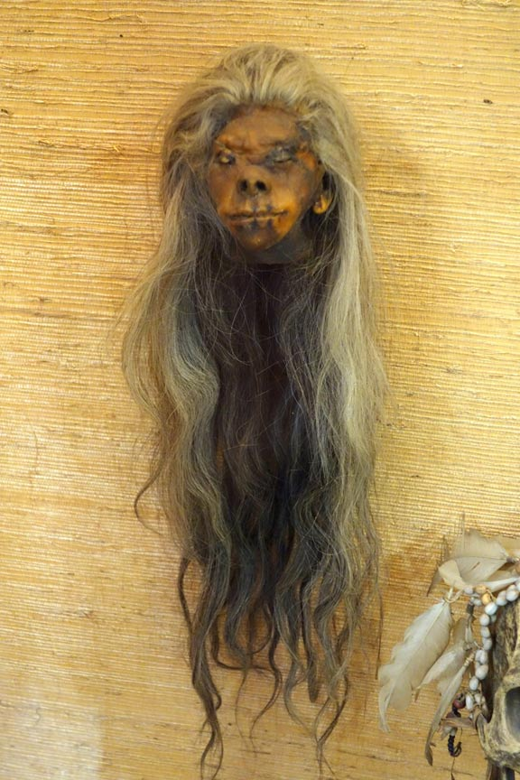 Another shrunken head from Ecuador. Exhibited in the Royal Museum for Central Africa, Tervuren, Belgium.